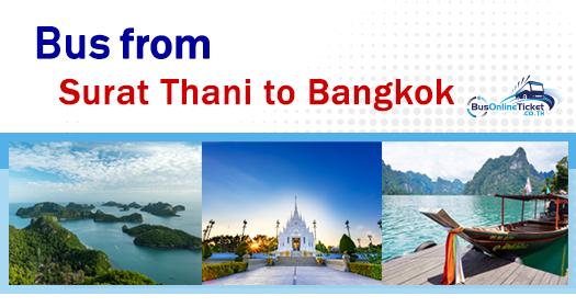 Bus from Surat-Thani to Bangkok